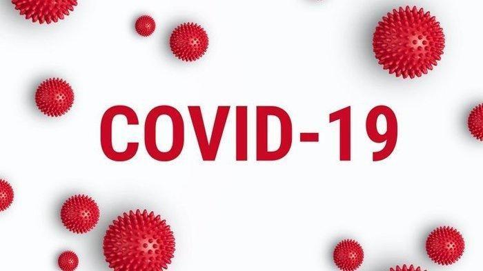 Kasus Positif Virus Corona di DKI Jakarta Terdapat di 222 Kelurahan,  naviri.org, Naviri Magazine, naviri