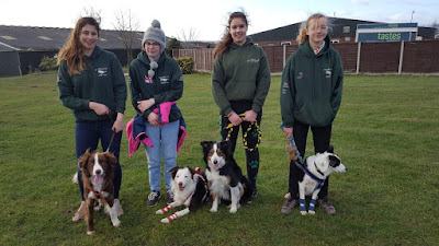 The youth team of local Flyball club Brigg Muttley Crew will be going head to head with the best youth teams in the country at Crufts International Dog Show, held in March 2019 - see Nigel Fisher's Brigg Blog