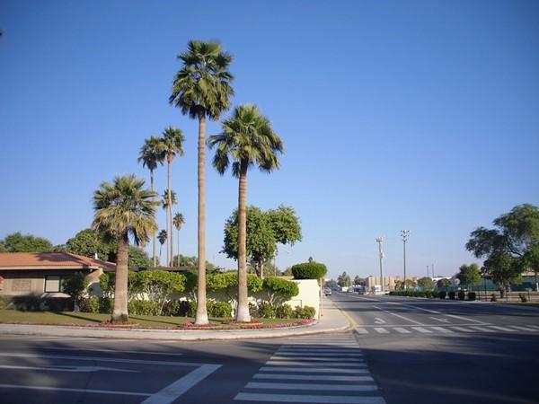 مدينة الظهران