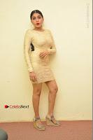 Actress Pooja Roshan Stills in Golden Short Dress at Box Movie Audio Launch  0128.JPG