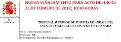 TSJA: JUICIO 23 DE FEBRERO DE 2017; 10:30 HORAS