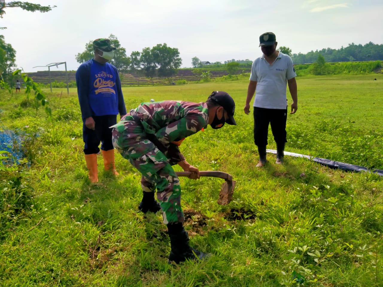 INDES-HANKAM TNI MOBILISIR MASYARAKAT BOYOLALI HIJAUKAN LAHAN KOSONG 01