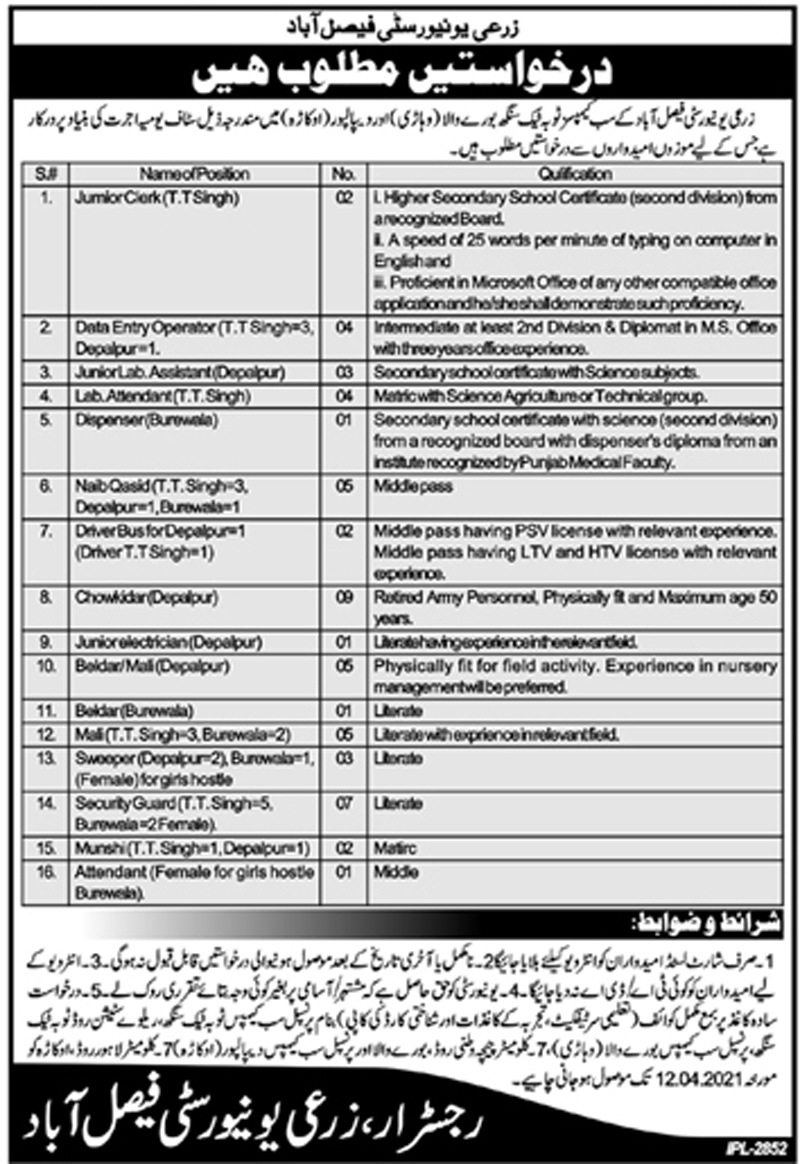 Latest University of Agriculture Faisalabad Jobs 2021 Advertisement