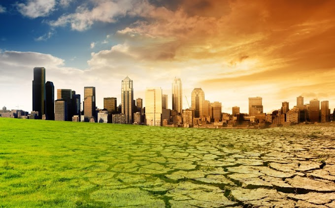 Climate Change Awareness: 11 Things To Do To Minimize Our Carbon Footprints