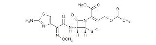 Cefotaxime yakni obat antibiotik sefalosporin Cefotaxime