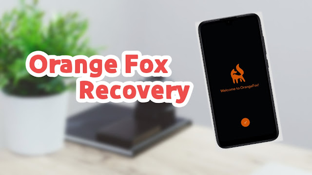 latest orange fox recovery