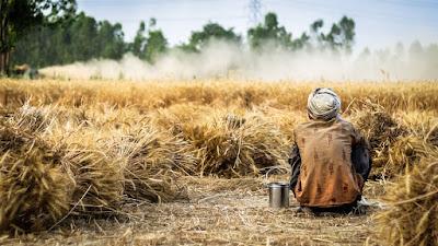 Hindi Poetry on Life of Farmer, Hindi Kavita on Life of Farmer