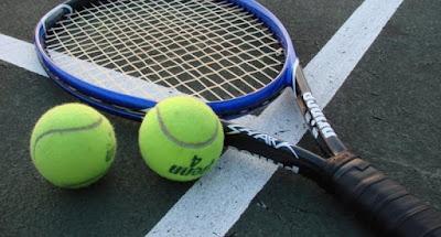http://43sports.blogspot.com/2017/01/sejarah-perkembangan-tenis-indonesia.html