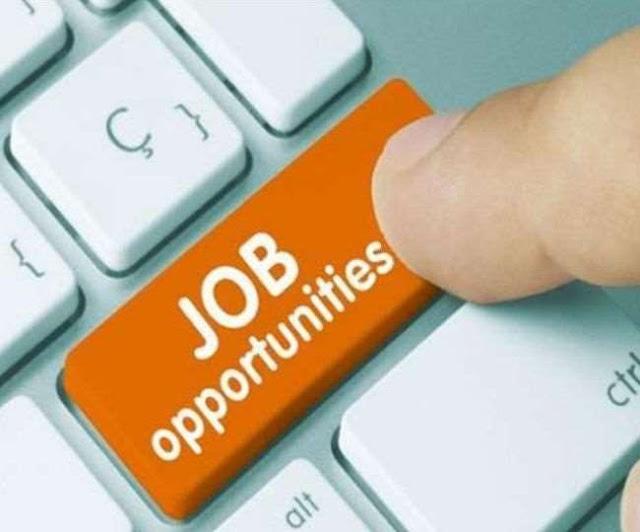 जूनियर स्टाफ नर्स और ओटी टेक्शीनियन सहित अन्य पदों पर निकली भर्ती, 15 मई तक करें आवेदन
