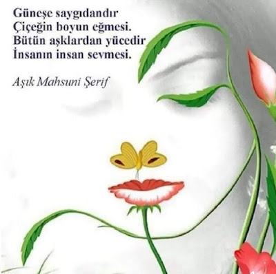 Güneşe saygıdandır, Çiçeğin boyun eğmesi. Bütün aşklardan yücedir, İnsanın insan sevmesi... (Aşık Mahzuni Şerif), şiir, şair, sanatçı, türkücü, şarkıcı, kadın, çiçek, yaprak, ağaç, çizim