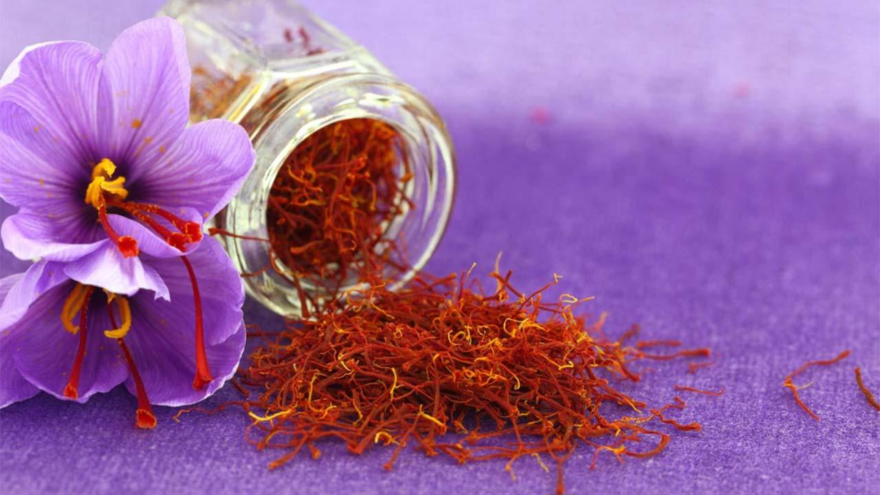 Manfaat Saffron Bagi Kesehatan