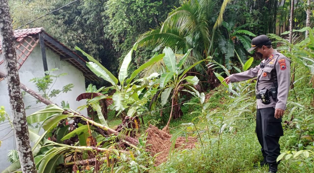 Diguyur Hujan Deras, 5 Rumah di Mrebet Rusak Akibat Tanah Longsor dan Tertimpa Pohon