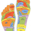 Reflexology – More Than A Manual Therapy