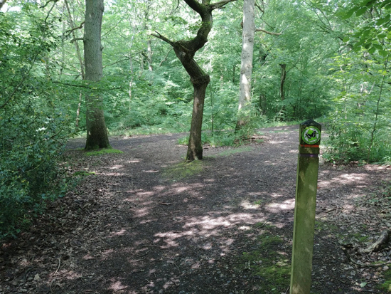 During section 4 of the walk you follow way-marked signs Image by Hertfordshire Walker released under Creative Commons BY-NC-SA 4.0