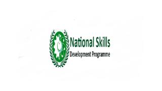 National Skills Development Program (NSDP) Jobs 2021 - ndmst.pk jobs 2021