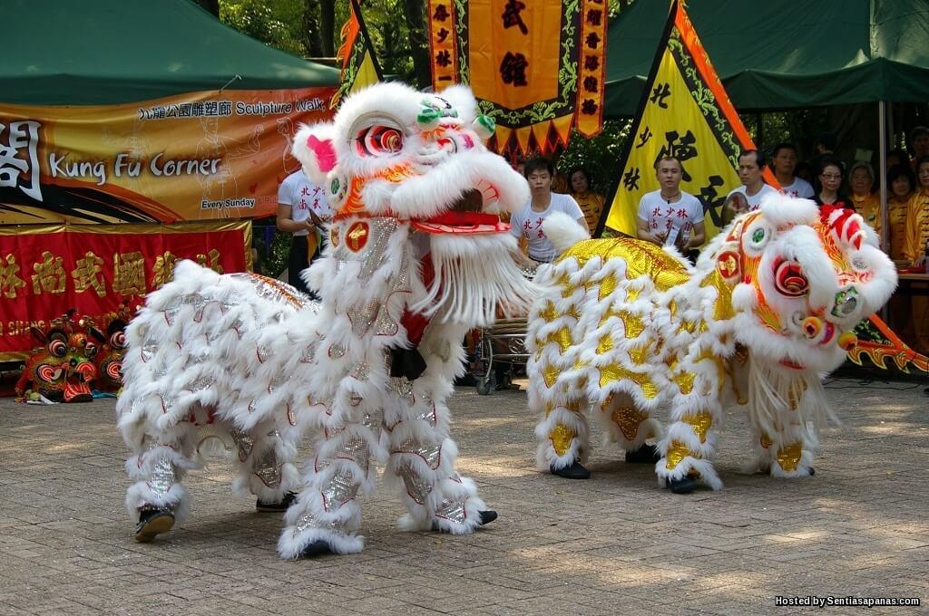 Apa Sebenarnya Perbezaan Tarian Singa Dan Tarian Naga?