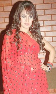 Liza Malik Saree 4