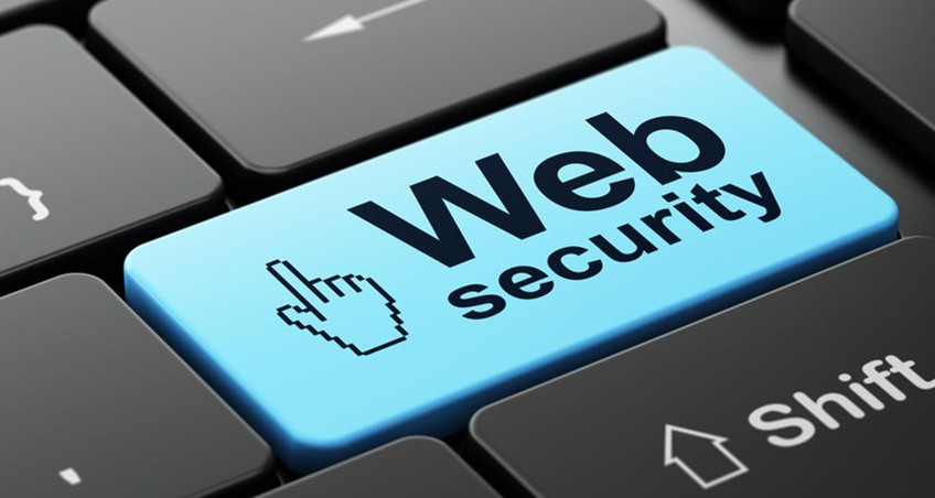 5 Reasons Why Your Company Needs Web Security