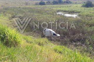 http://vnoticia.com.br/noticia/3849-motorista-sai-ileso-apos-carro-voar-ribanceira-abaixo-em-morr