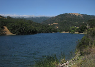 Almaden Reservoir on a windy day with fog blowing in over the hills, San Jose, California