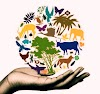 22 May- INTERNATIONAL DAY FOR BIOLOGICAL DIVERSITY 2020 : Theme, History and event day.