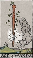 The Ace of Wands, RWS