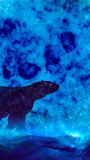 Bear Mobile HD Wallpaper
