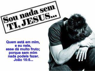 Resultado de imagem para João 15:5