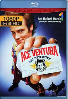 Ace Ventura Un Detective Diferente [1994] [1080p BRrip] [Latino-Inglés] [GoogleDrive] RafagaHD