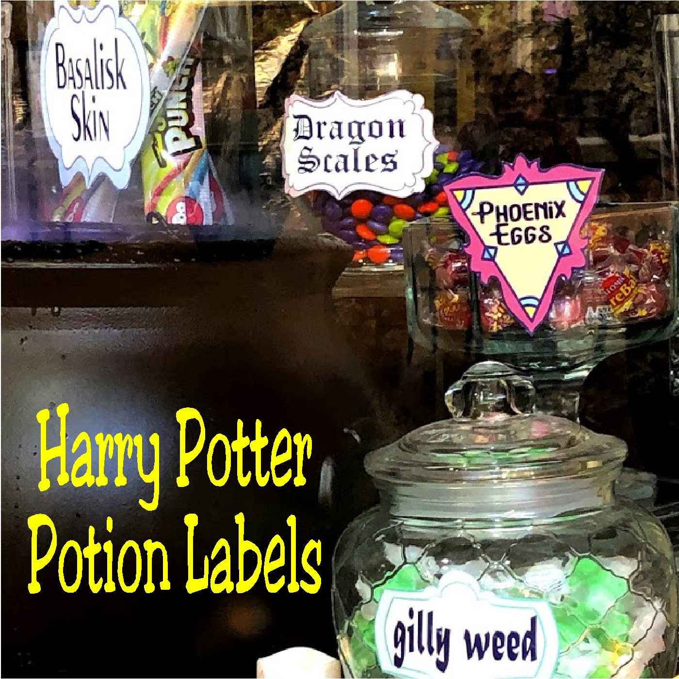 23 Candy Potion Ideas And Harry Potter Potion Label