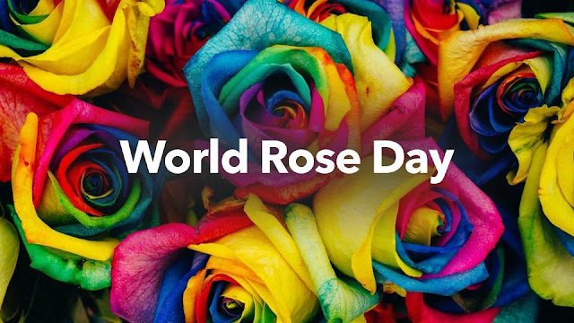 rose day in hindi