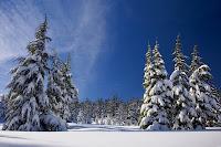 poslovicy-pogovorki-sneg