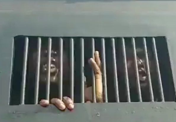 How Protesters Protesting At The Lekki Tollgate Where Arrested