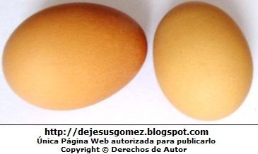 Huevos crudos. Foto de huevos de Jesus Gómez