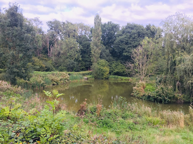 Godstone vineyard lake