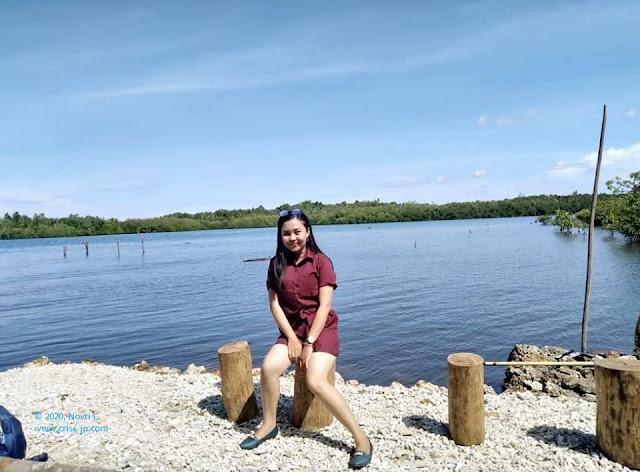 Wisata Mangrove Nias