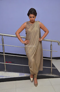 Nikki Galrani in Saree 016.JPG