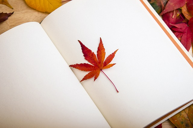 Bagaimana Menulis Diary Bisa Menghilangkan Rasa Malas