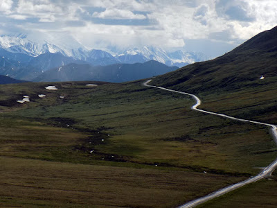 Denali Park Road is the Only Road in the National Park