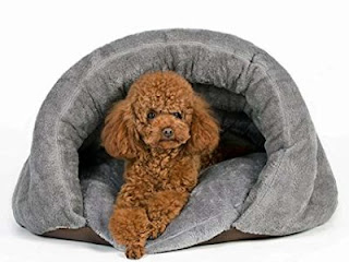 Secured Dog Beds