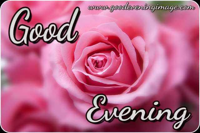 good evening love pic