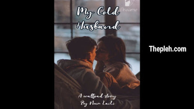 Novel my cold Husband Full Episode