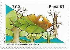 Proteção ao Meio Ambiente - Floresta