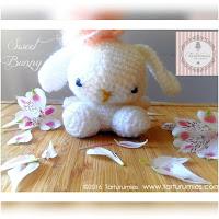 http://amigurumislandia.blogspot.com.ar/2019/01/amigurumi-conejita-sweet-bunny-tarturumies.html