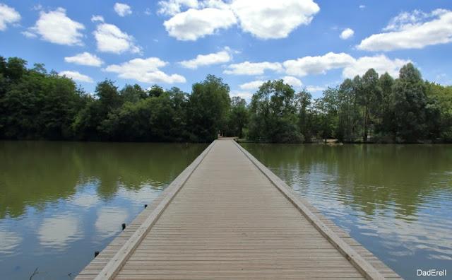 Passerelle sur un étang du Parc des Oiseaux de Villars-les-Dombes