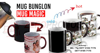 Jual Mug Bunglon Magic Custom Premium