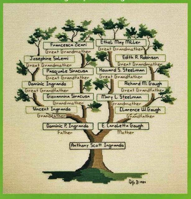 haftowane drzewo genealogiczne