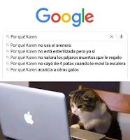gato buscando en google humor