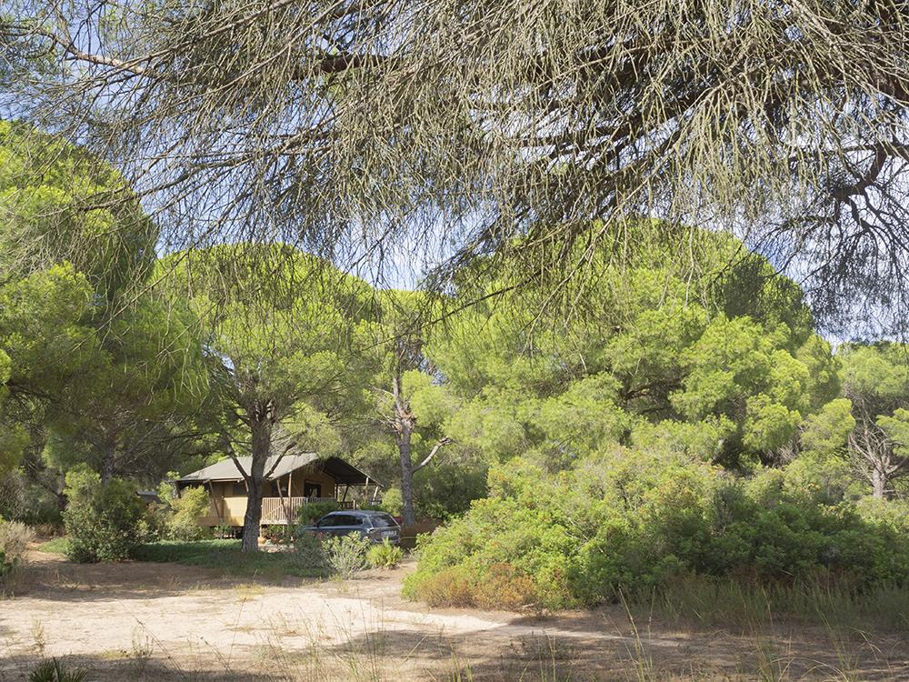 Jabalina Country Tents: Glamping en la Dehesa de las Yeguas de Cádiz_2
