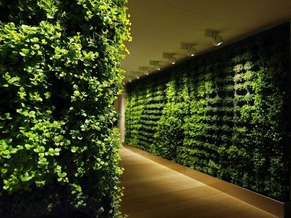 Plants in Wall 2